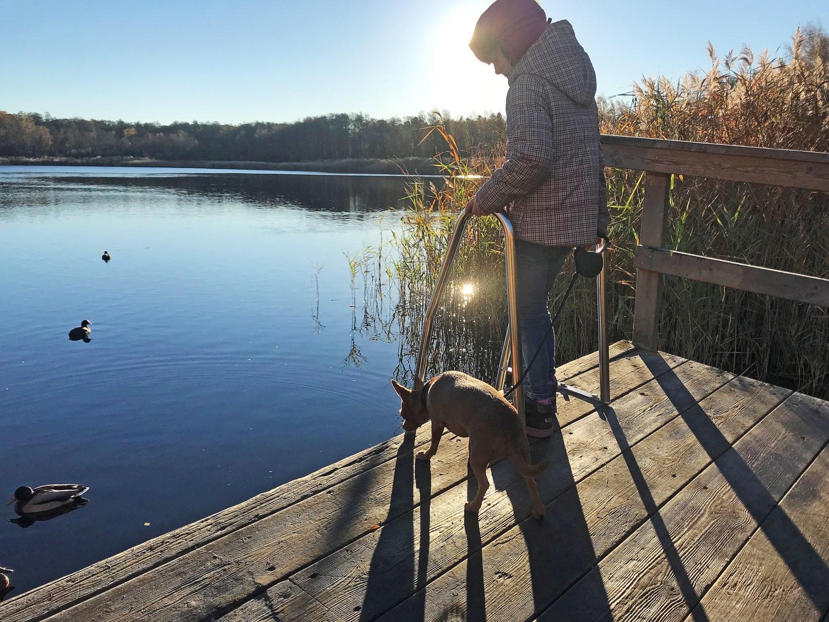 Höstdag vid Kyrksjön