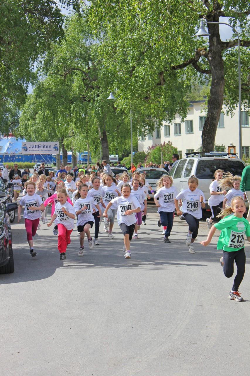 Tolvanloppet Ålsten - en av alla lokala aktiviteter
