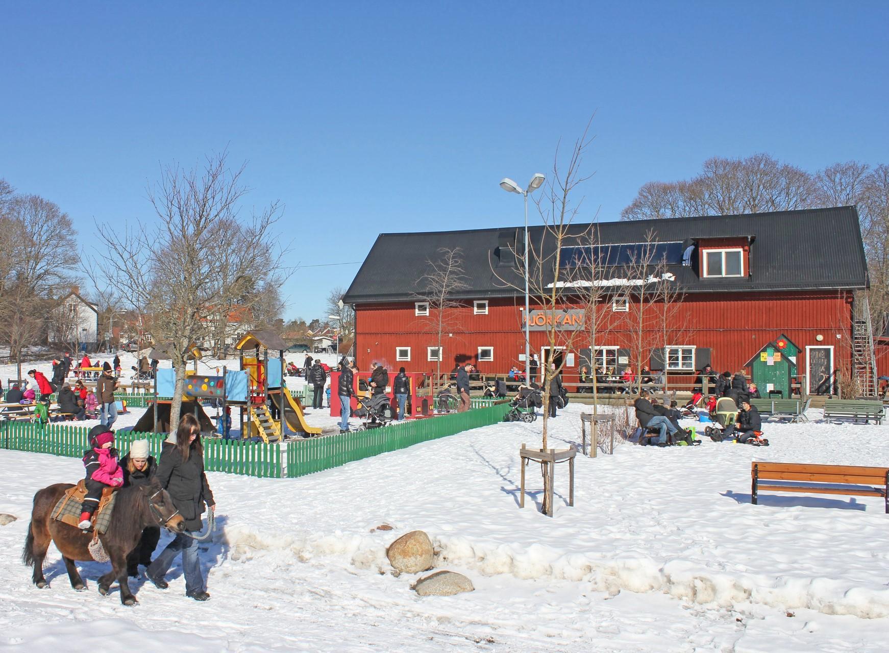 Björklundshage vinter