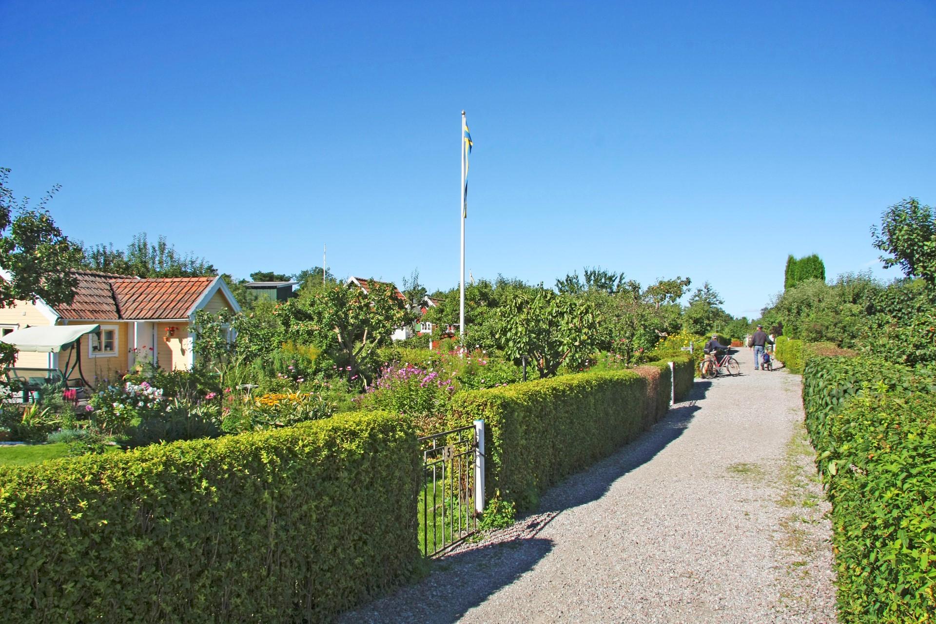 Koloniträdgårdarna
