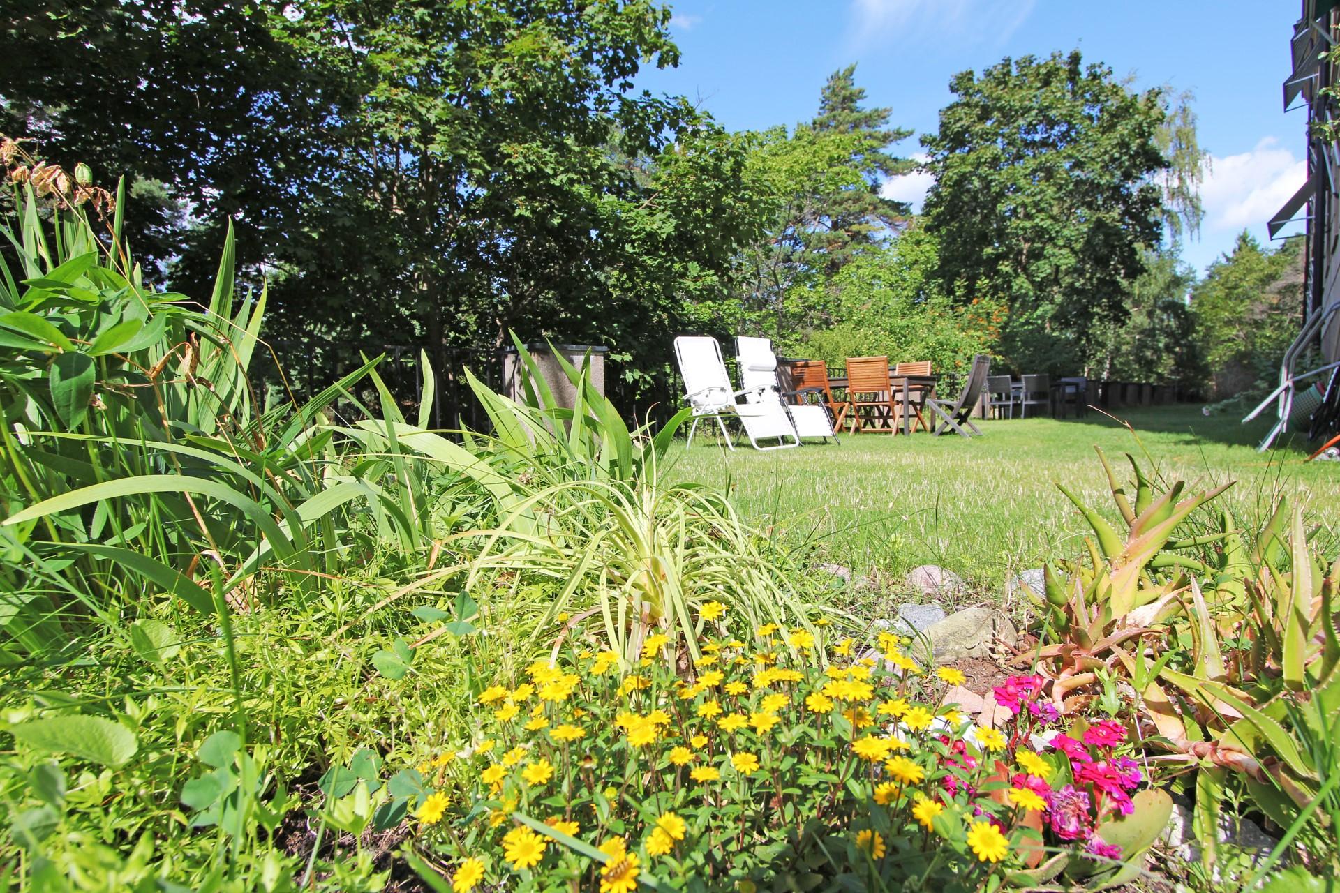 En härlig trädgård