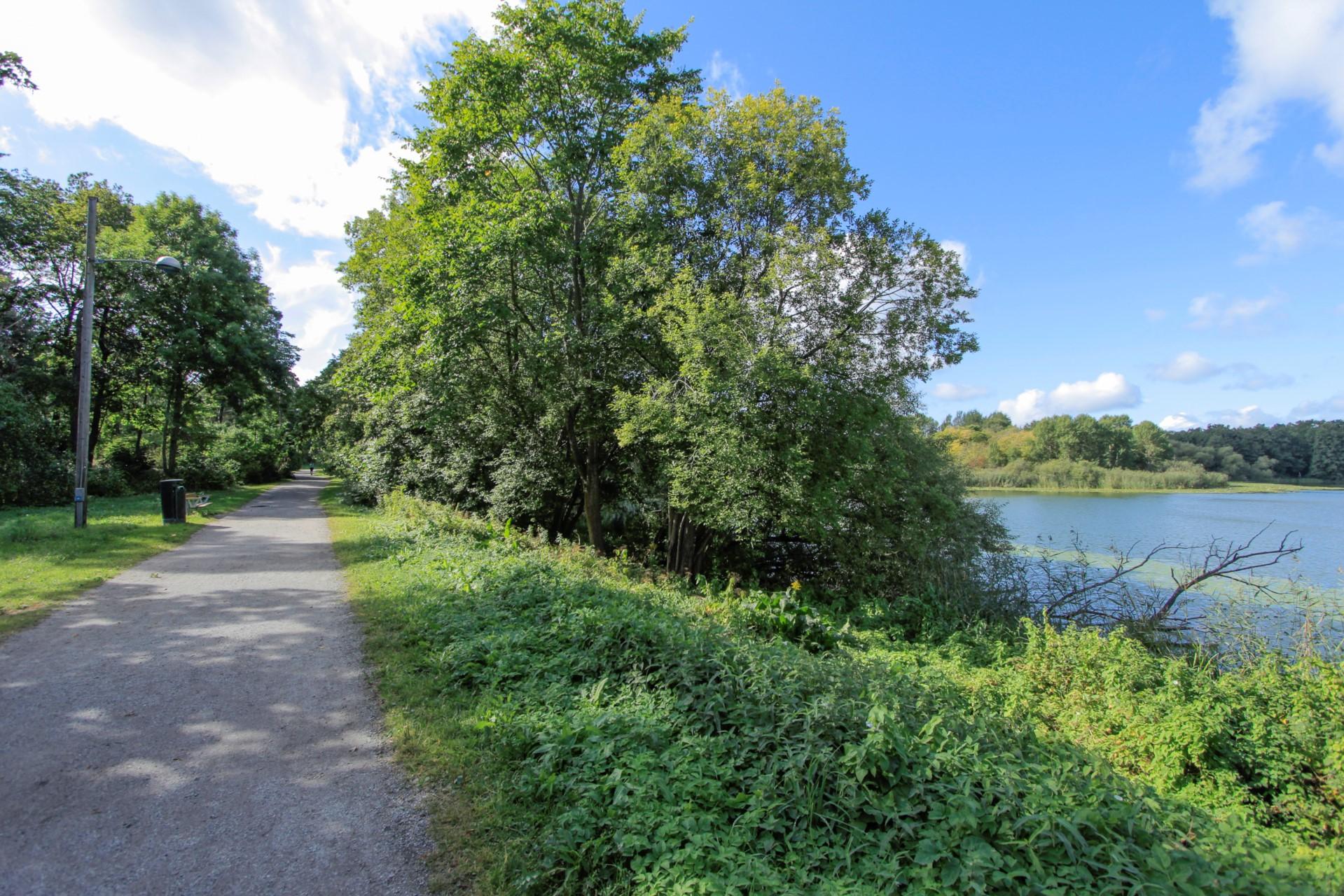 Motionsrunda och utegym vid Lillsjön