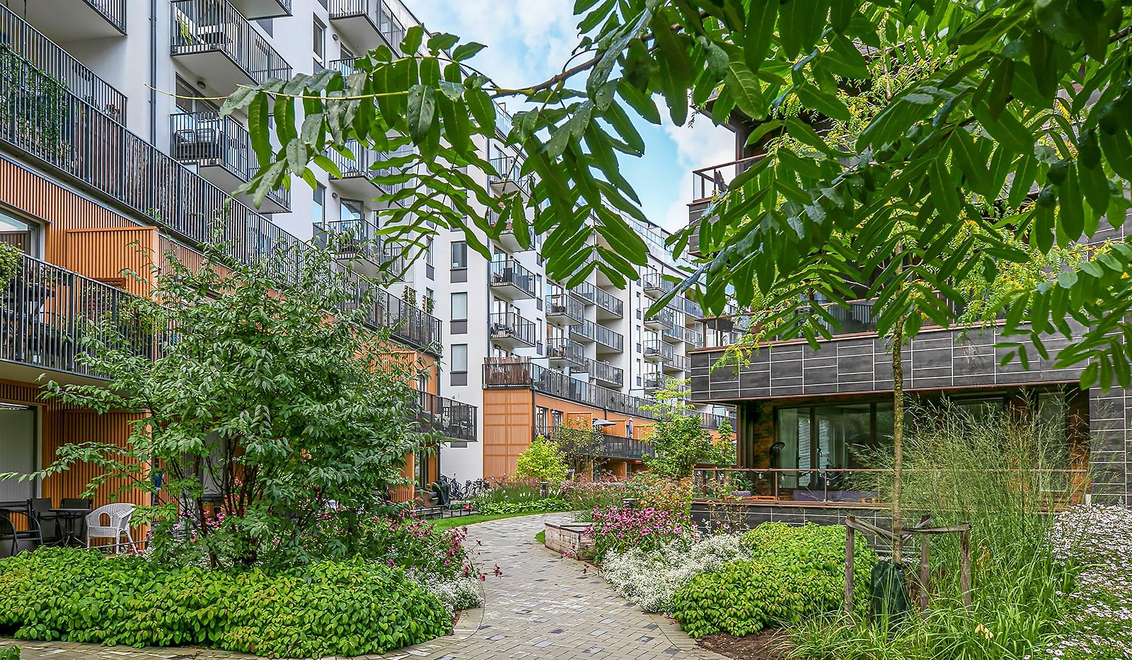 Hammarby Allé 15, vån 5 - De blomstrande planteringar gör att gården känns mer som en park
