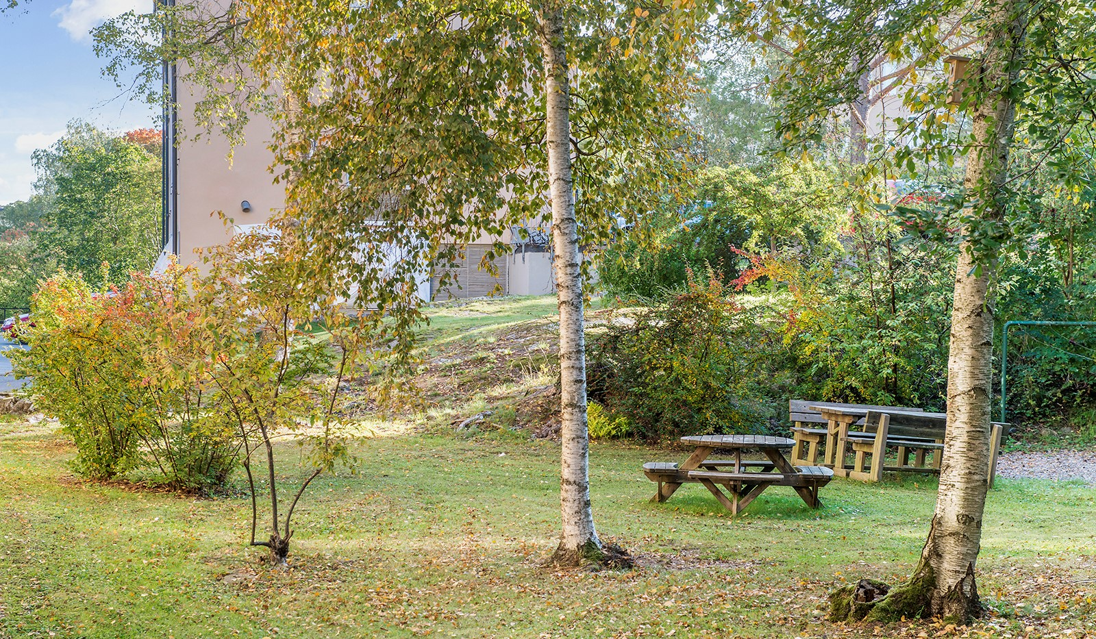 Kransbindarvägen 51 - Föreningens lummiga trädgård med grillmöjligheter