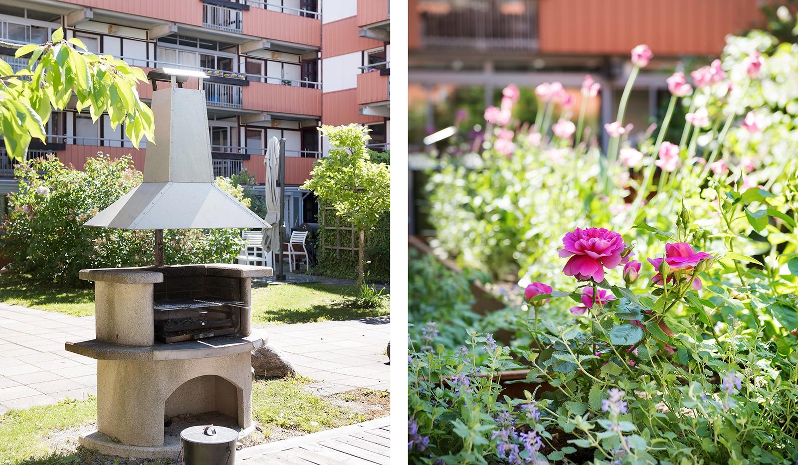 Folkungagatan 58 - Innergården bjuder både på grönska och blommor om sommaren
